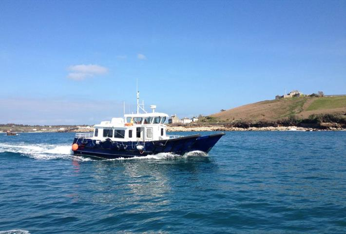 St. Agnes Boating Wildlife Safaris